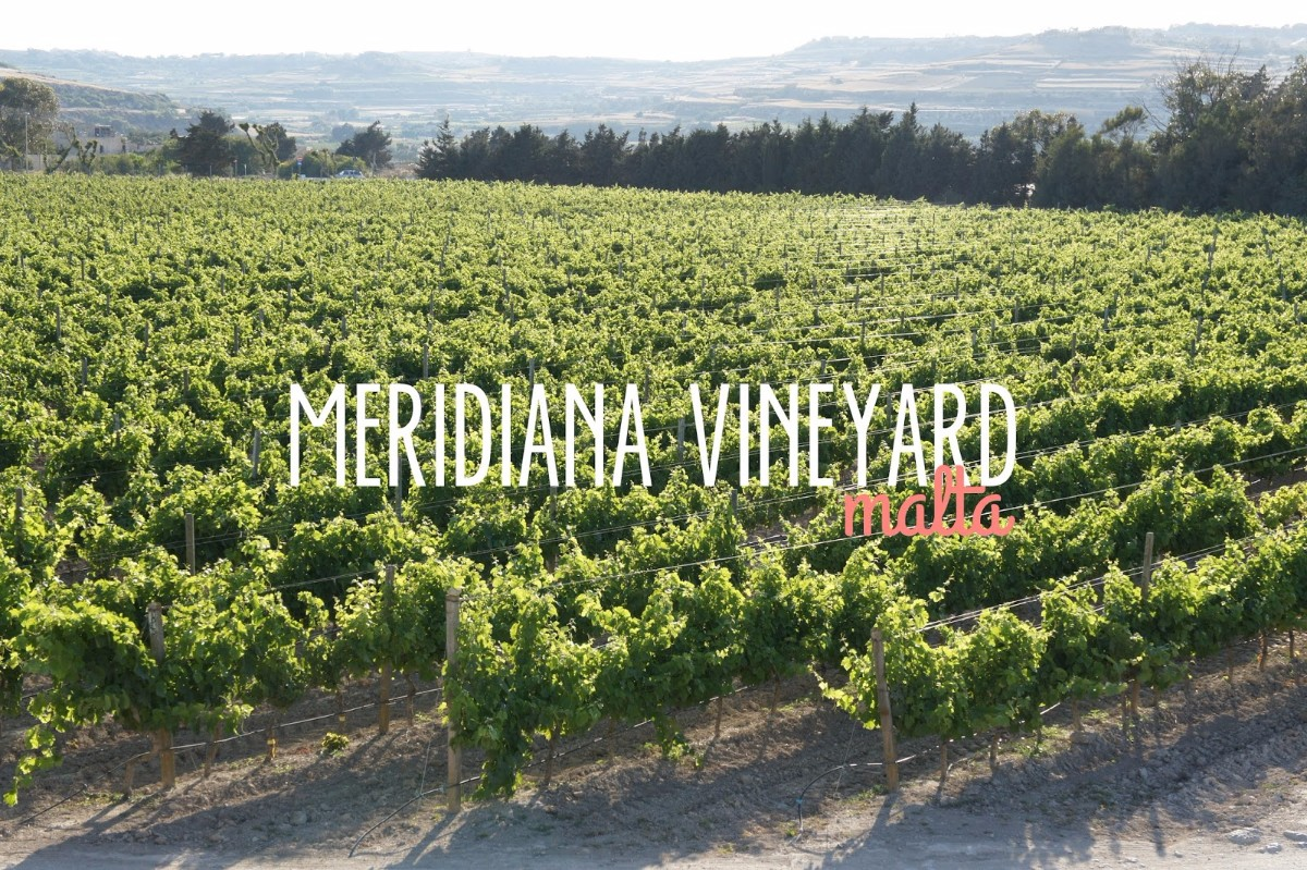 Exclusive travel – a Meridiana dinner